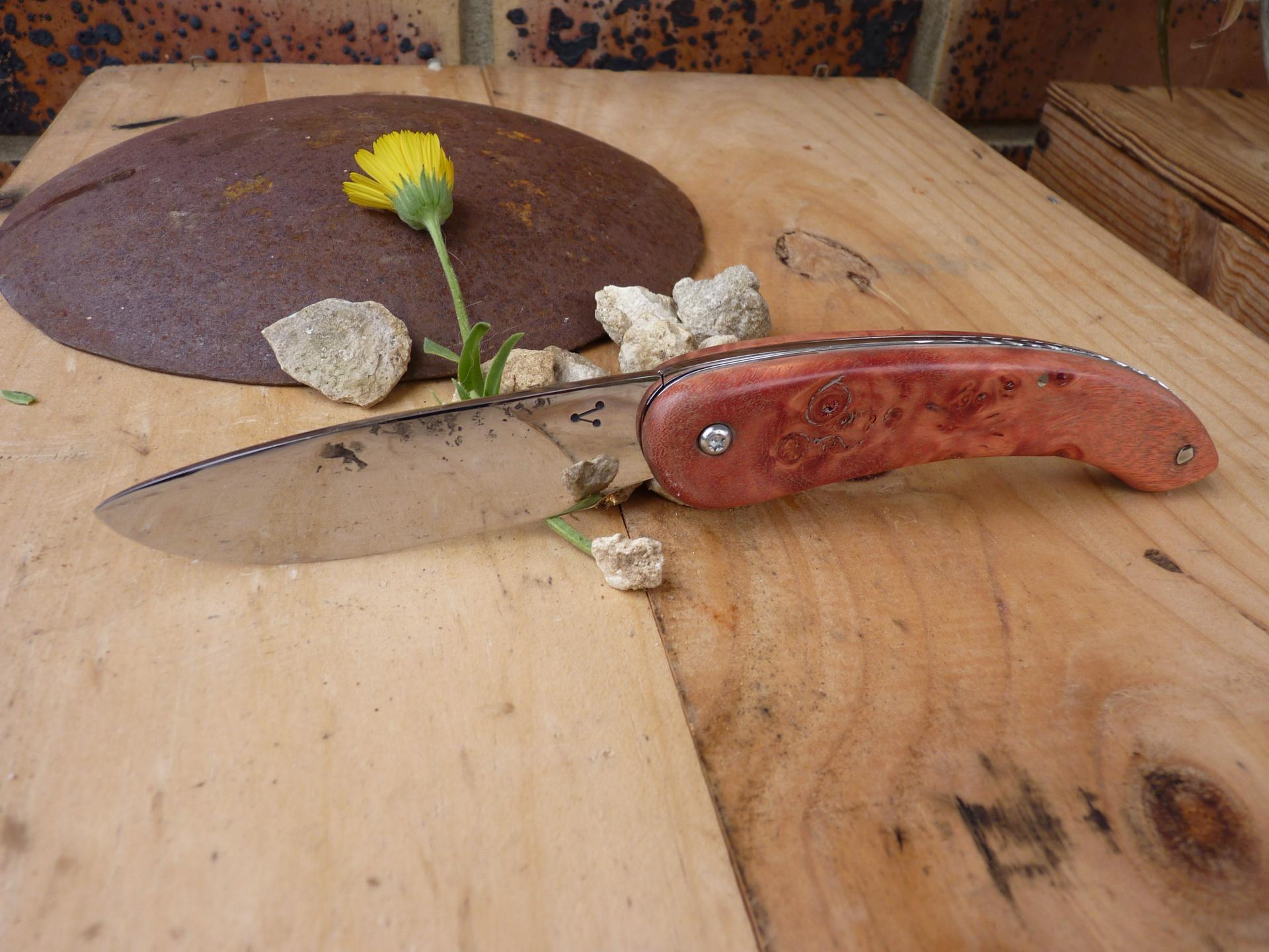 Inox brut de forge sur loupe de hêtre rouge